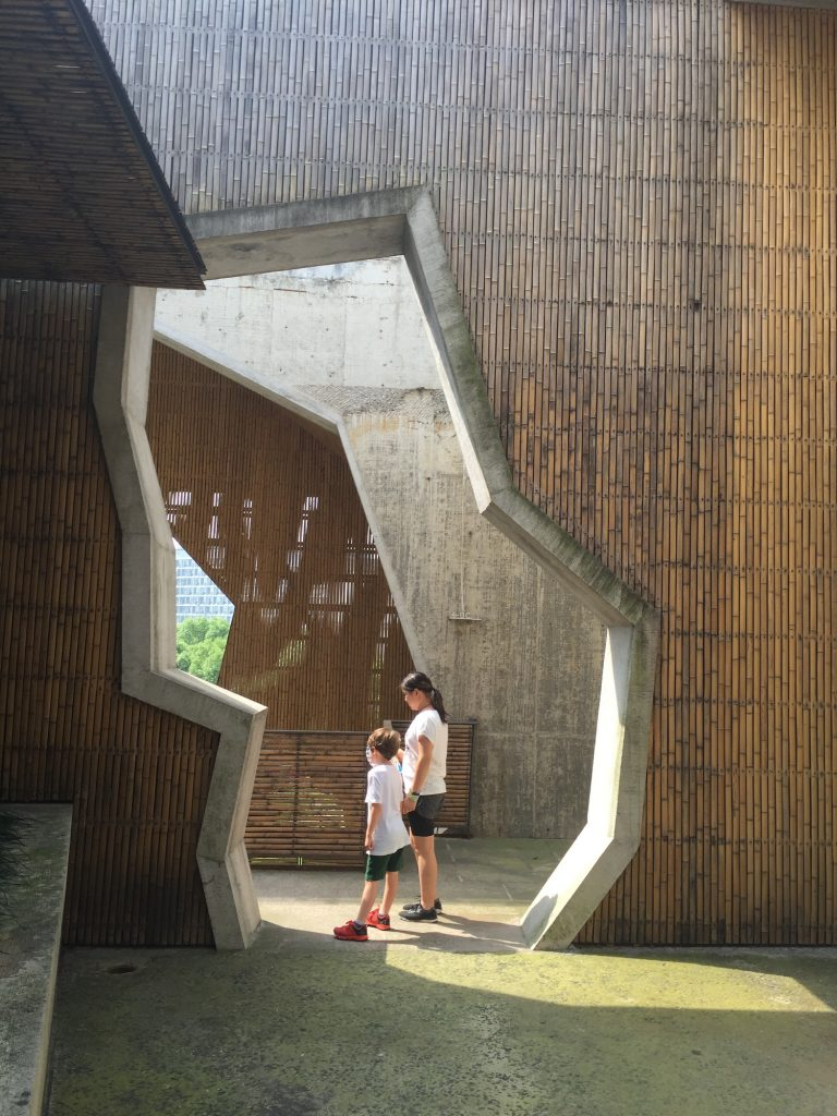 Campus architecture at China Academy of Art, Hangzhou