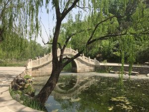 Tsinghua campus in spring