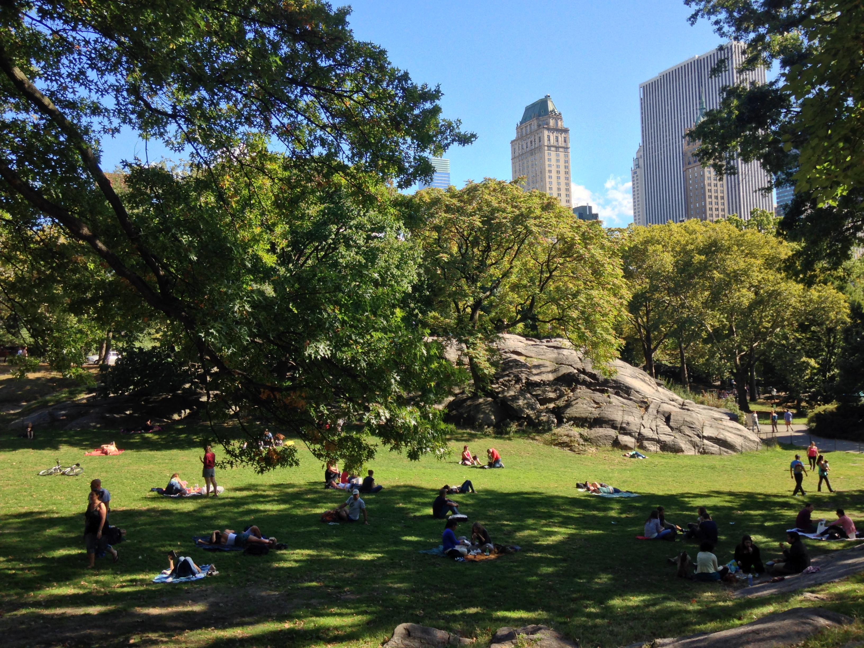 New York Inside The Un Murphy Scholars Report