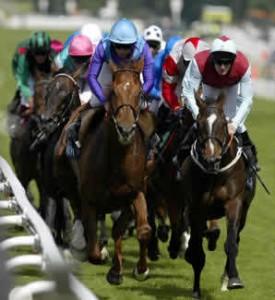 horse-racing[1]