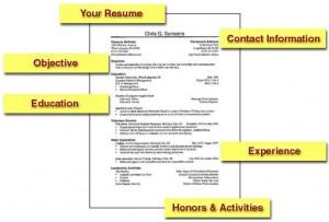 ResumeTemplate
